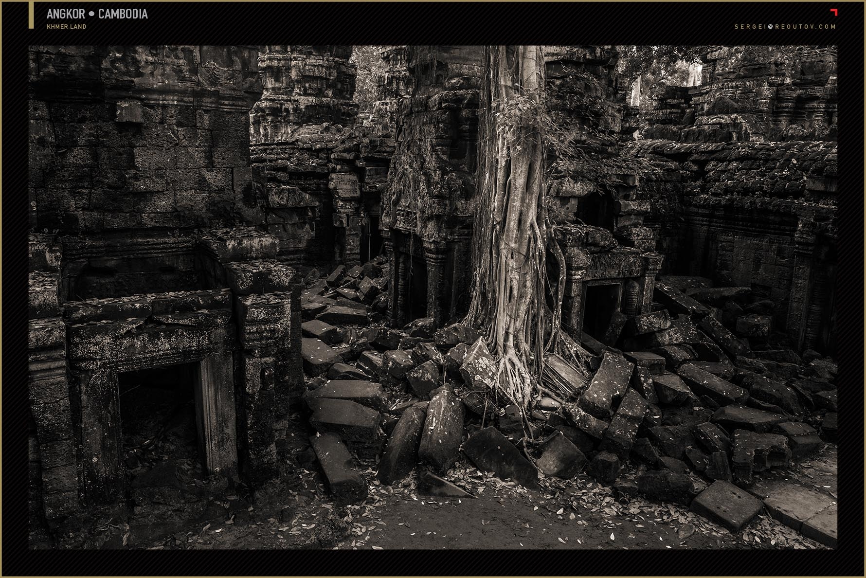Ta Prohm Temple at Angkor, Siem Reap, Cambodia